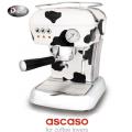 ASCASO-DREAM-MF-COW-1